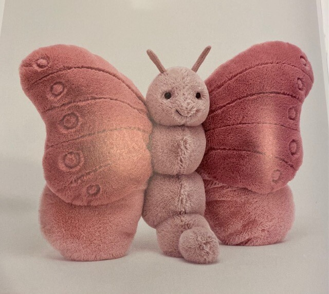 Beatrice vlinder