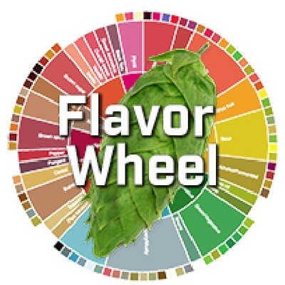 Almanac Beer Co. Blanc Flavor Wheel Sour - Sour/Other (1/6 BBL KEG)