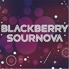 Almanac Beer Co. Blackberry Sournova - Sour/Fruited (4 PACK)