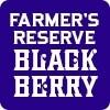 Almanac Beer Co. Farmers Reserve Blackberry - American Wild Ale (1/6 BBL KEG)