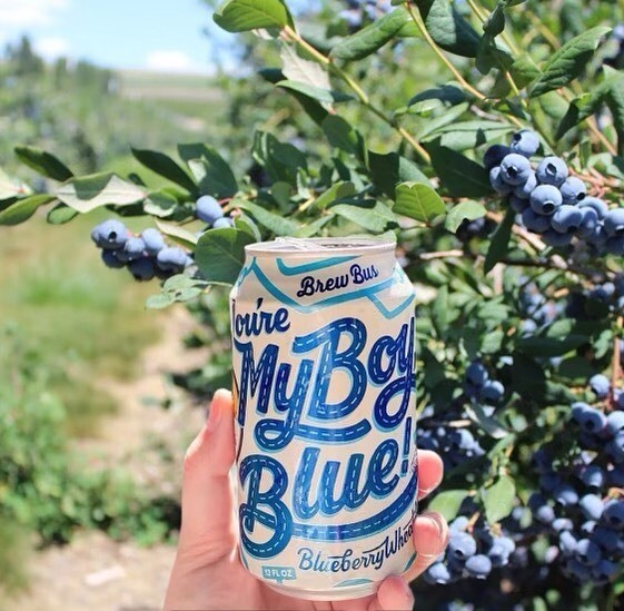 Brew Bus Brewing:You're My Boy Blue (6-PACK)