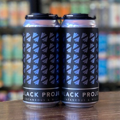 Black Project Cryptic Sour Ale Blackberry & Blueberry (4-PACK)