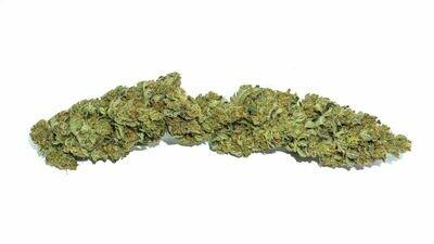 Organic BC OG Sour Diesel