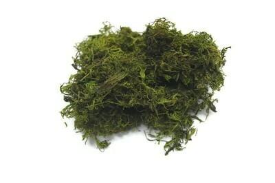 Premium moss (large bag)