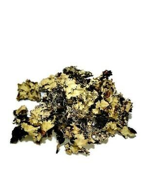 Posh moss (Lichen moss) small bag