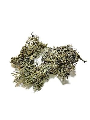 Natural Lichen (small bag)