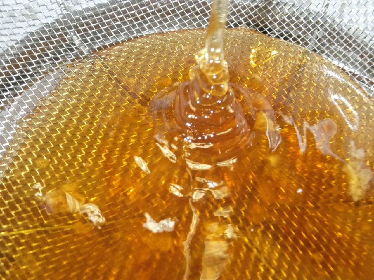 Honey Extraction Services