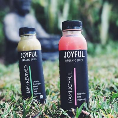 Joyful Juices - Assortment - 12pack
