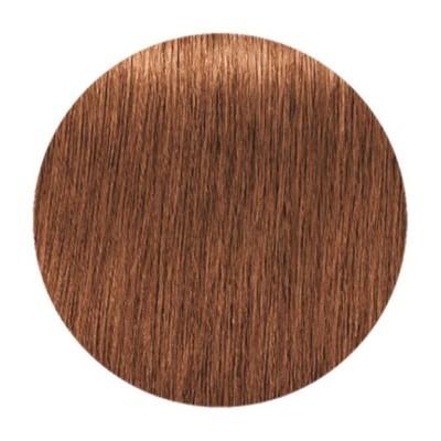 Краска для седых волос IGORA ROYAL ABSOLUTES 7-710 Средний русый медный сандрэ