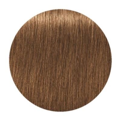 Краска для седых волос IGORA ROYAL ABSOLUTES 7-450 Средний Русый Бежевый Золотистый