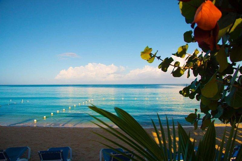 Sunscape Cove