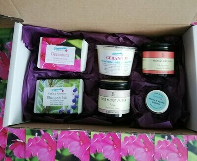 Treat box of geranium and rose