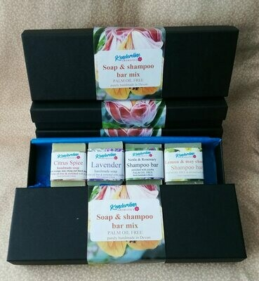Mini mix of soap and shampoo bar set