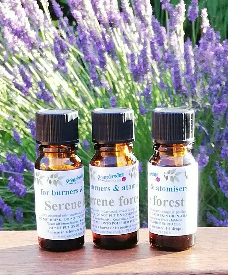 Essential oils - serene forest blend