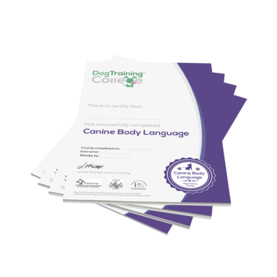 CBL Certificates (Pack of 25)
