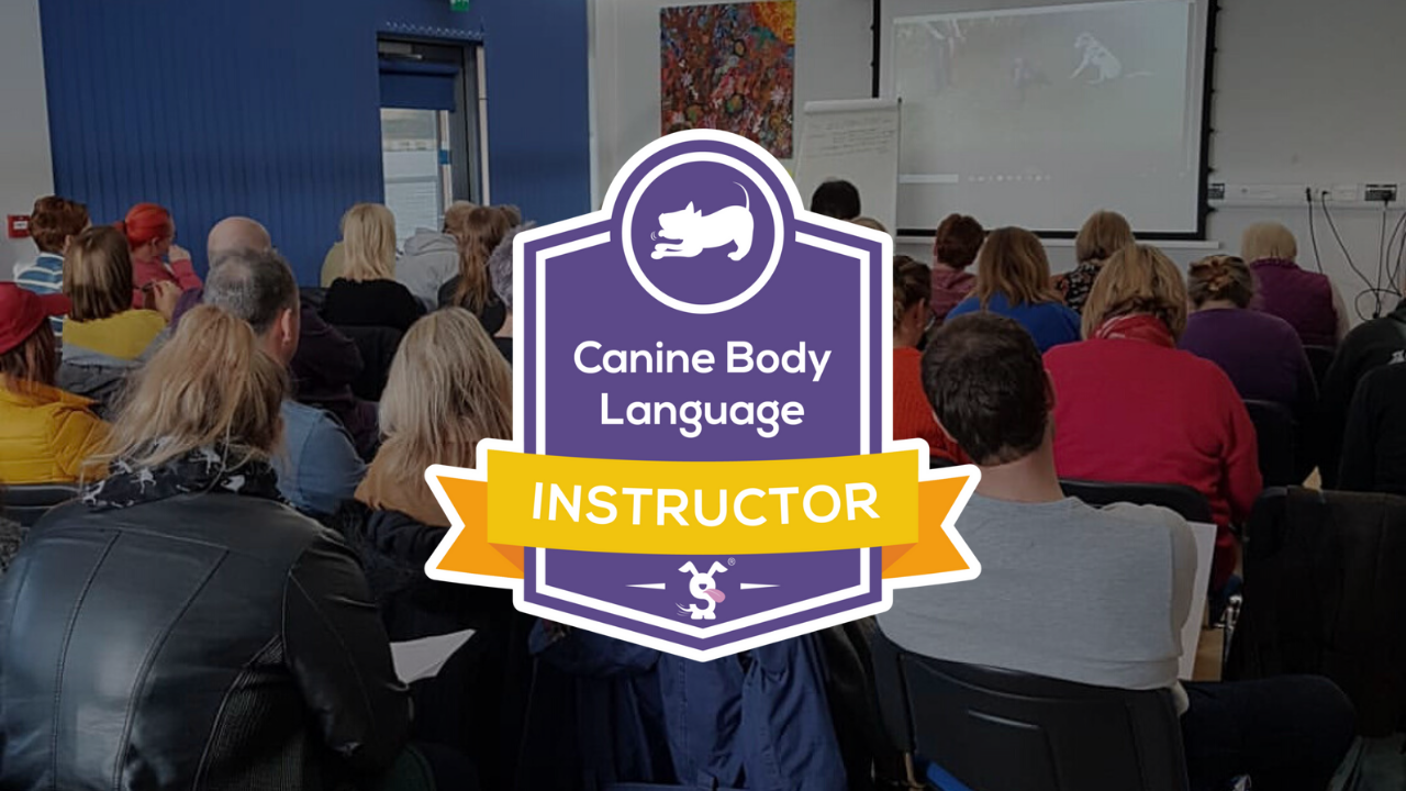 CBL Instructor Course - LIVE STREAM