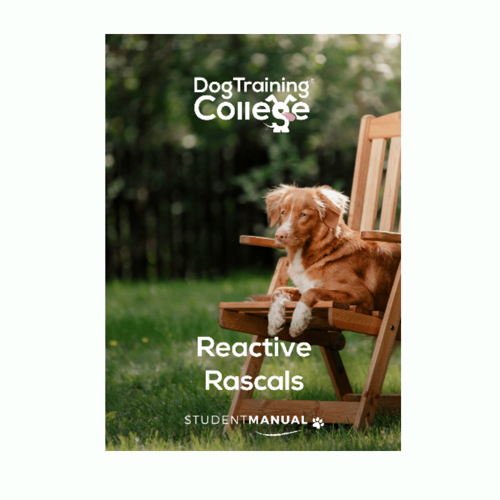 Reactive Rascals - Student Manual