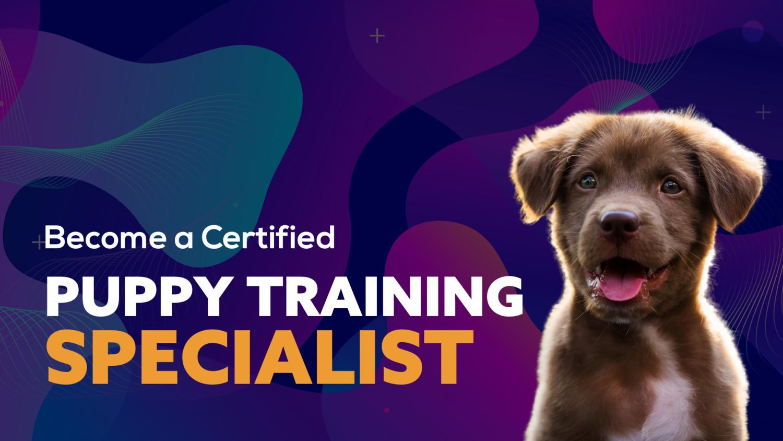 Puppy Training  (Specialist Program)