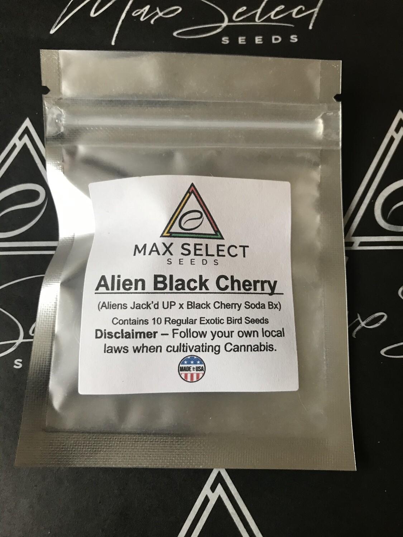 Alien Black Cherry
