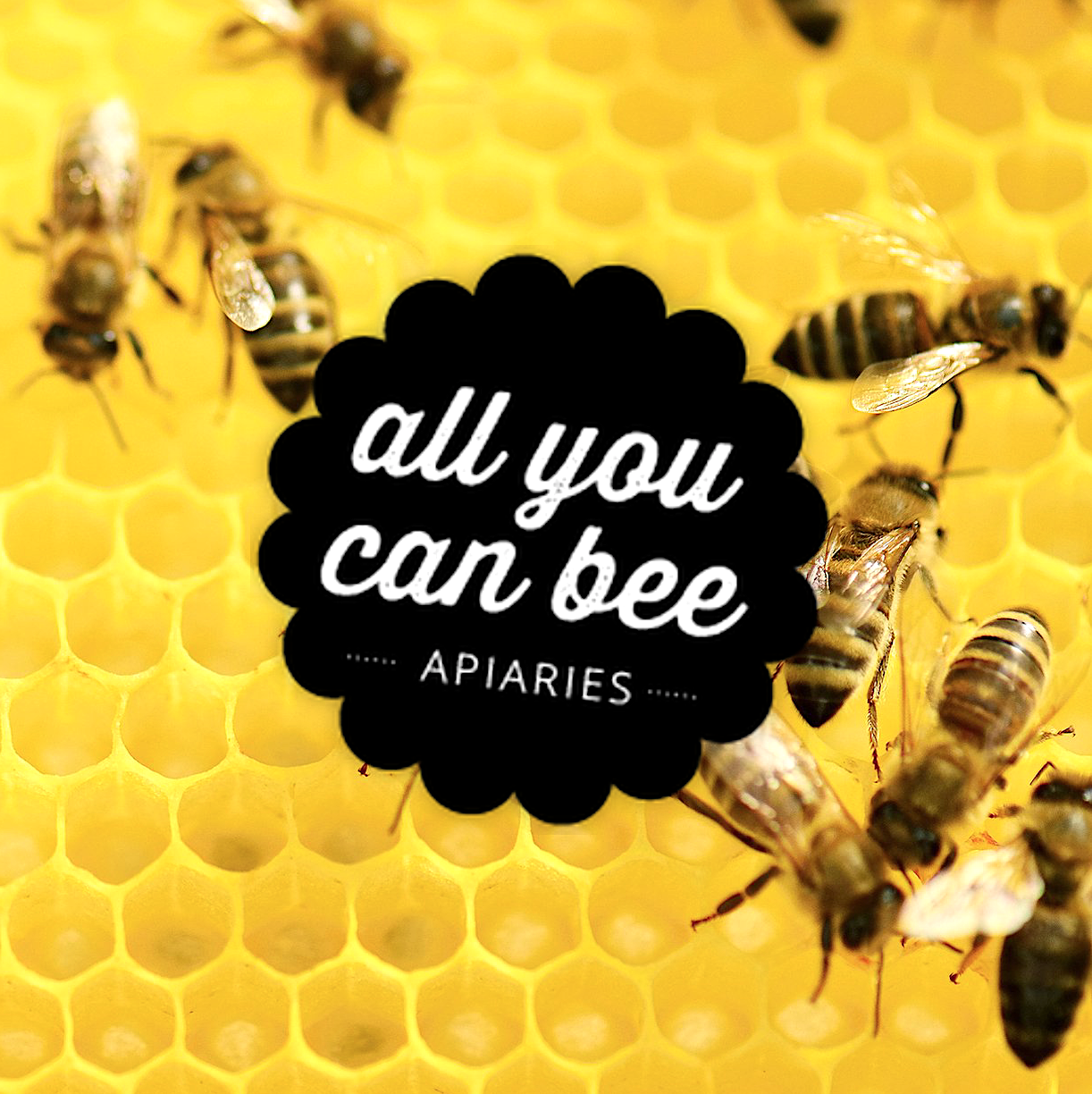 All You Can Bee Local, Raw Honey (Local NJ)
