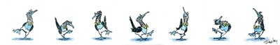 Dance of the Blue Footed Booby