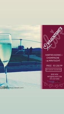 Valentine's Harties Scenic Flight + Champagne