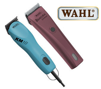 WAHL CLIPPER SERVICE - BASIC