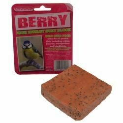 Suet to Go Berry Suet Block in Tray