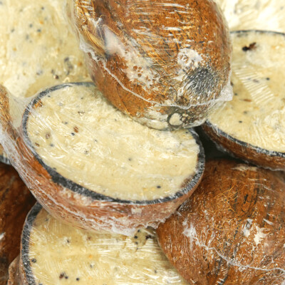 Suet Filled Half Coconut