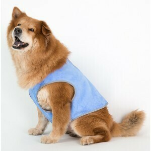 Coco Jojo Cooling Vest XL 96cm