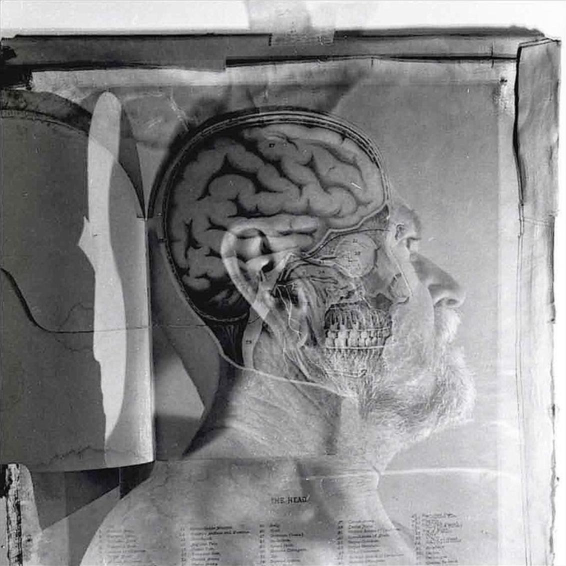 THE HEAD- Self Portrait