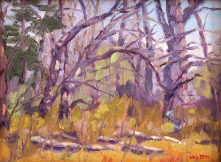 Woodland Interior 3