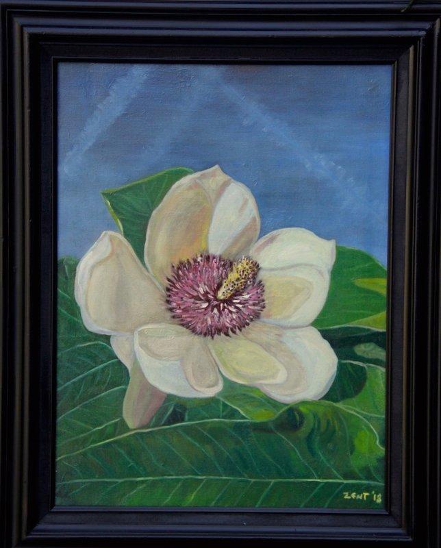Contrails and Magnolia
