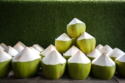 Peeled top Coconut - Green, Young, Organic, Coco - Box of 9