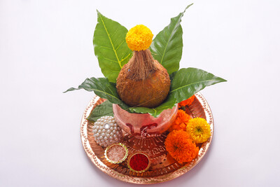 Pooja / Puja Ceremonial Coconuts - 8 Pack
