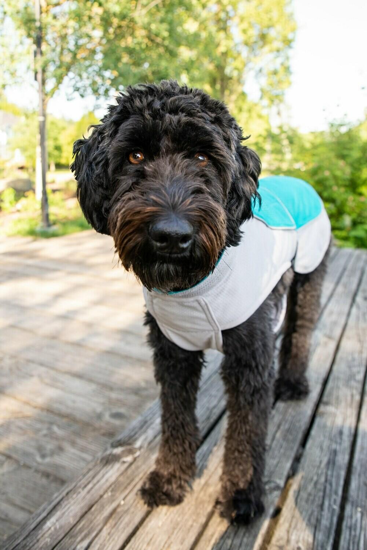 CoolDog Cooling Jacket