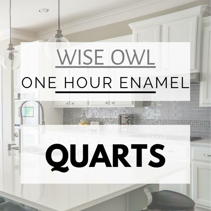 Wise Owl 1 Hour Enamel Paint, 32 oz Quart, ***FREE SHIPPING***