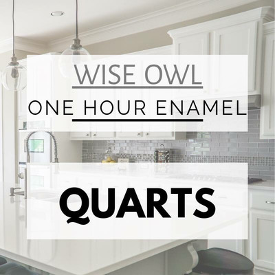 Wise Owl 1 Hour Enamel Paint, 32 oz Quart, ***FREE SHIPPING***