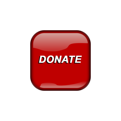 Make a donation to the MS Society
