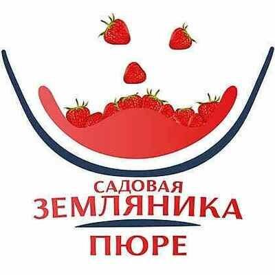 Фруктовое пюре Земляника садовая 0,5 кг