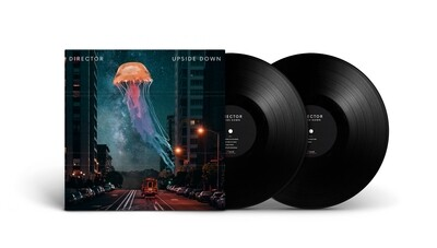 2 LP - Vinyle - Upside Down
