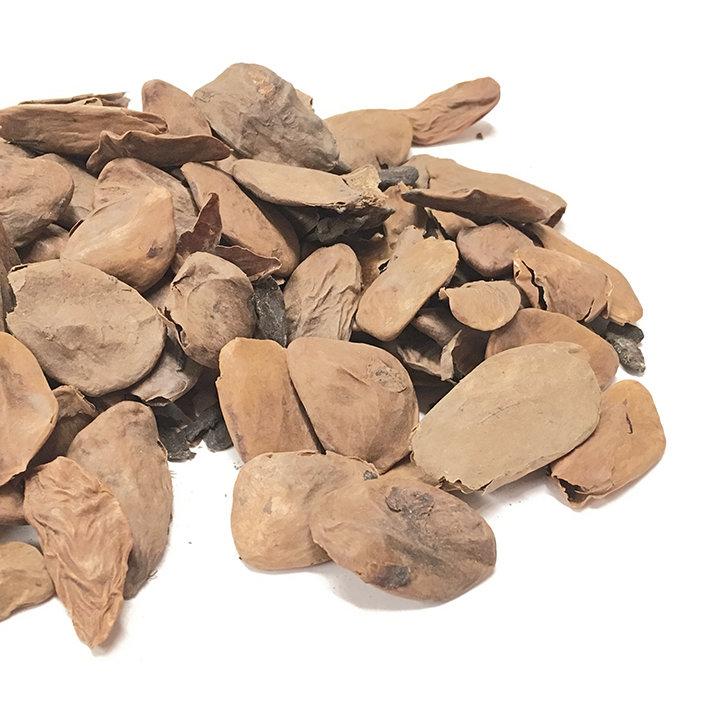 Akuamma (Picralima nitida) seed powder (2oz)