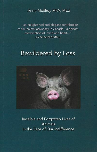 Bewildered by Loss: Invisible and Forgotten Lives of Animals in the Face of Our Indifference