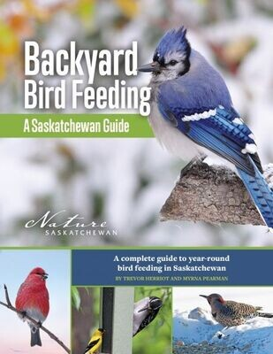 Backyard Bird Feeding: A Saskatchewan Guide