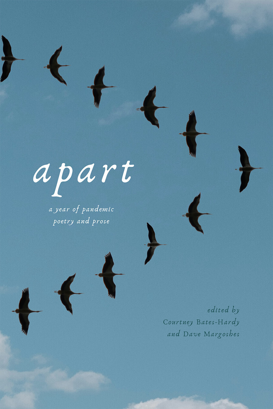apart: a year of pandemic poetry and prose