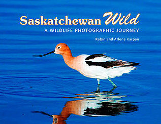 Saskatchewan Wild: A Wildlife Photographic Journey