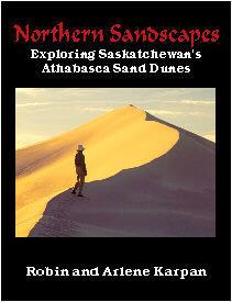 Northern Sandscapes: Exploring Saskatchewan's Athabasca Sand Dunes