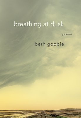 breathing at dusk: poems