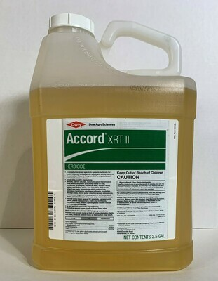 Accord XRT II - Includes Shipping