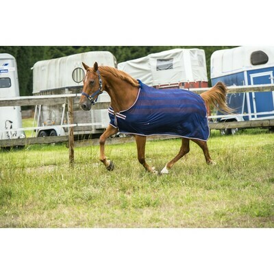 Chemise filet Equit'M by EQUITHEME